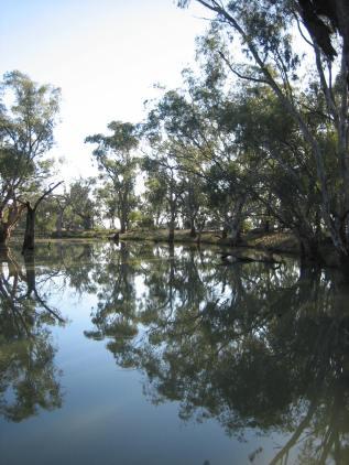 Broken Creek, Goulburn-Broken CMA, Victoria, Australia.
