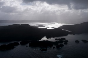 Anchor Island is one of the few predator-free islands off the New Zealand coast were Kakapo are still surviving following translocation (photo by Paul Nevin, http://bit.ly/13vbRaq)