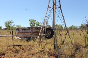 Figure 6: Ben Phillips inspects an old bore near the middle of the Kimberley-Pilbara corridor