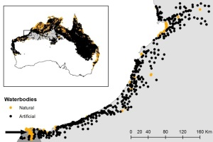 Figure 4: Distributions of natural (orange) and artificial (black) water bodies in the study area (black box in inset). The black arrow in the lower left-hand corner of the main figure shows the location of the De Grey River in the Pilbara. Broome is at the top right.