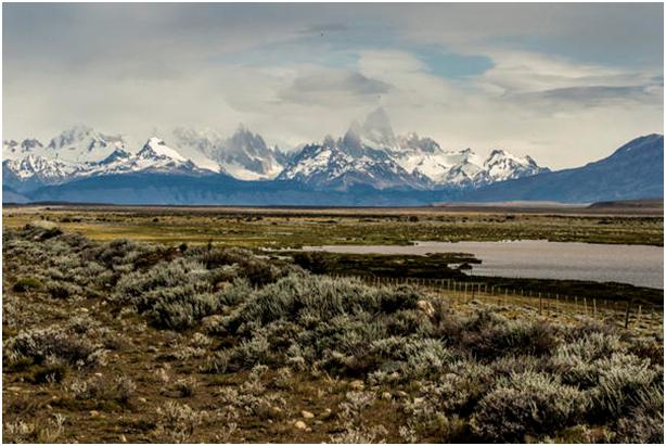 PatagoniaGrasslands